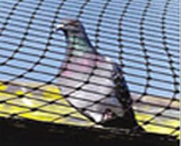 Ochranné sítě proti ptákům