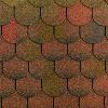 Topglass Beaver - hnědá podzim